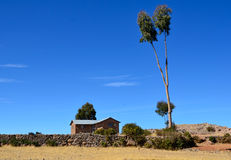 House and tree on Amantani Island stock images