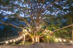 House on the tree Stock Photo