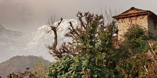 A house, a tree and a snowy mountain. Traditional Nepalese house royalty free stock photos