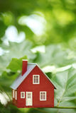 House in the trees Stock Image