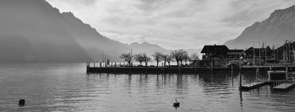Scene in Brienz, Switzerland. Lake Brienzersee and mount Augstma. House and trees in Brienz, Switzerland. Lake Brienzersee and mountains Royalty Free Stock Photos