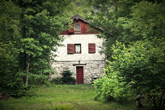House in the trees Royalty Free Stock Photography