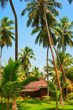 House on the tropical island Stock Photography