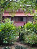 House and tropical plants Stock Photography
