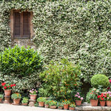 House in Tuscany. House facade in a traditional Tuscany village, Pienza, Italy Royalty Free Stock Images