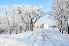 The house in the undefiled fairy tale world in the winter. The photo was taken in forest park  Daqing city Heilongjiang province,China Stock Photos