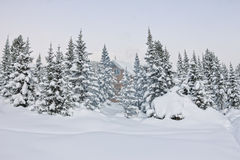 House under snow in winter wood chalet among spruce trees in the Royalty Free Stock Photo