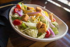House Vegetable Salad. Deliscous fresh organic house salad with croutons stock photography