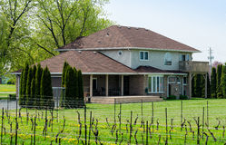 House with a vineyard in Niagara region Royalty Free Stock Photo
