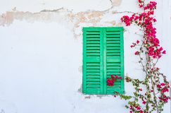 Mediterranean house with green window and bougainvillea flowers royalty free stock images