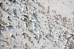 House wall with flaking paint, background texture Royalty Free Stock Photos
