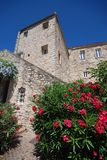 House wall with Flowers in france Royalty Free Stock Photos