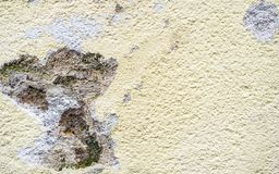 House wall refurbishment, detail view of wet mold facade royalty free stock images