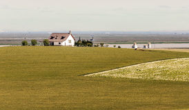 House with wheatfield Stock Photography