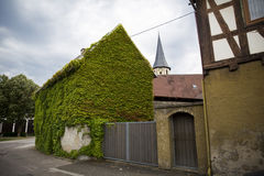 House, whose walls are covered with ivy on the streets of a smal Stock Photo