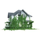 House with wild plants Stock Images