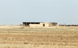 House in the wilderness. Kazakhstan Royalty Free Stock Photography