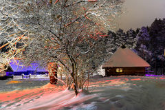 House in the winter night Royalty Free Stock Image