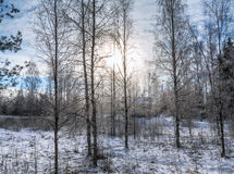 The house in a winter wood. Royalty Free Stock Images