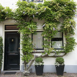 House with wisteria Royalty Free Stock Images