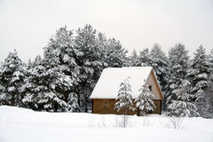House in wood. Winter landscape with house in wood stock photo