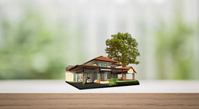 House on wood shelf with tree dream Stock Image