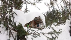 House wooden chalet in the winter in the snow around the tree, video slider.  stock video