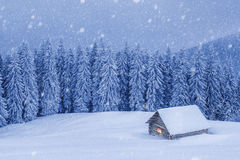 House. Wooden house in winter forest Royalty Free Stock Photos