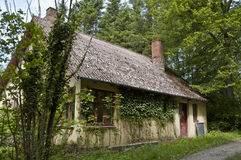 House in the woods. An old house in the lush green woods overgrown with ivy Royalty Free Stock Photos