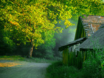 House in the woods Royalty Free Stock Images