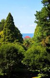 House in the woods on a background of the sea Royalty Free Stock Photography