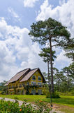 House in the woods. Binh An Village Resort, Dalat, Vietnam Royalty Free Stock Image