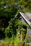 House in the woods in Cape Cod Stock Photography