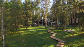 House in the woods. House located in a forest with large thin wooden and green grass