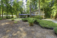 House in the woods. Summer time in Washington state Stock Images