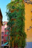 House wrapped in curly plants and narrow street in Nice on a sum. House wrapped in curly plants, narrow charming street and old colorful buildings in Nice royalty free stock image