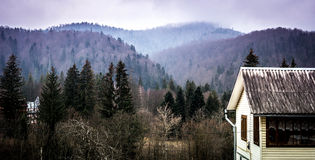 House and yard in Carpathian mountains Royalty Free Stock Photos