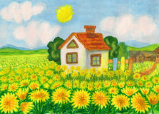 House with yellow dandelions Stock Image