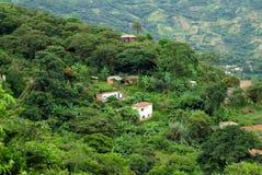 house yungas bolivia Fotografia Royalty Free