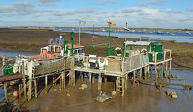 Houseboat Dwelling in the mud flats Royalty Free Stock Photo