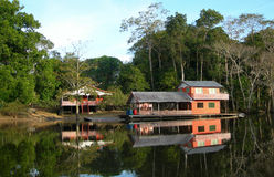 Houseboat in the rainforest Royalty Free Stock Photography