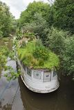 Houseboat with roof garden on the southern shore of the River Main, Frankfurt am Main, Germany.  stock image