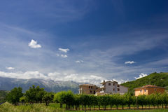 Housees on the horizon. On a bright summers day Royalty Free Stock Photos