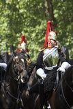 Household Cavalry Stock Images