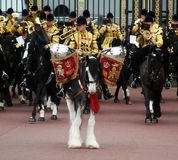 The Household Cavalry Band Drum Horse royalty free stock images