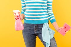 Household chore organized housewife atomizer cloth. Household chores. Organized housewife. Woman holding atomizer and sponge with cloth in pocket stock images