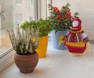 Household ornamental plants and folk doll motanka Stock Photo