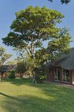 Household service house in Kudus Rus game lodge Royalty Free Stock Photos