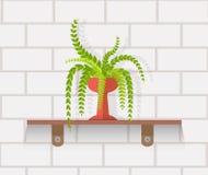 Houseplant Design Flat Concept Royalty Free Stock Photos