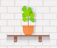 Houseplant Design Flat Concept Royalty Free Stock Photography